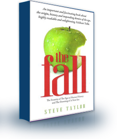 The book cover of 'The Fall', by Steve Taylor.