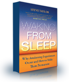 The book cover of 'Waking From Sleep', by Steve Taylor.